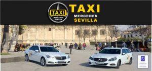 www.taxi-sevilla.es taxisreserva.com