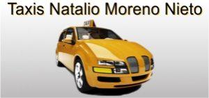 www.taxinataliomorenonieto.es taxisreserva.com