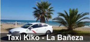 taxikiko.multiespaciosweb.com taxisreserva.com